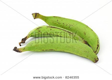 Three Plantain Bananas