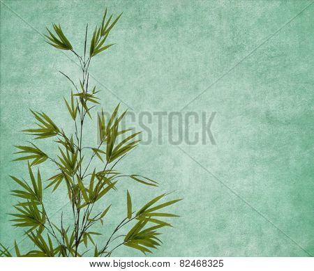 Silhouette of branches of a bamboo on old paper background