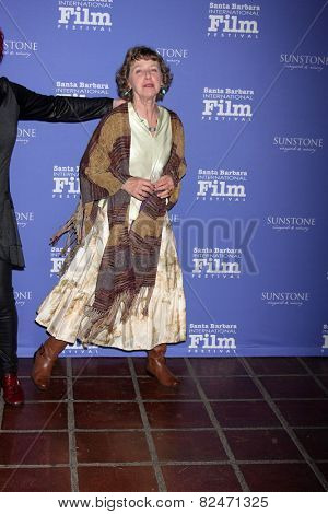 SANTA BARBARA - FEB 5:  Kathy Knapp at the Santa Barbara International Film Festival - American Riviera Award at a Arlington Theater on February 5, 2015 in Santa Barbara, CA