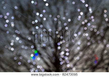 Defocused Night Lights With Deciduous Tree On Background