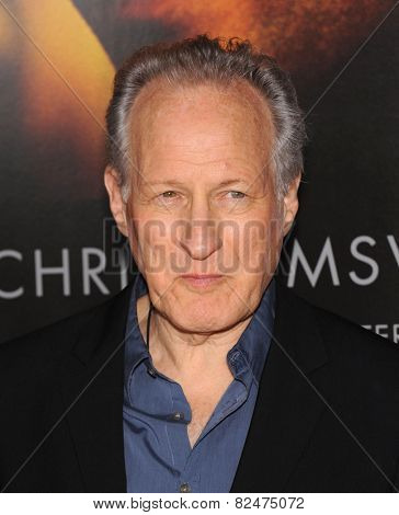 LOS ANGELES - JAN 08:  Michael Mann arrives to the