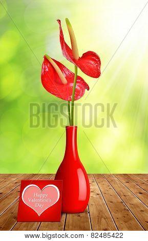 Red Anthurium flower in vase