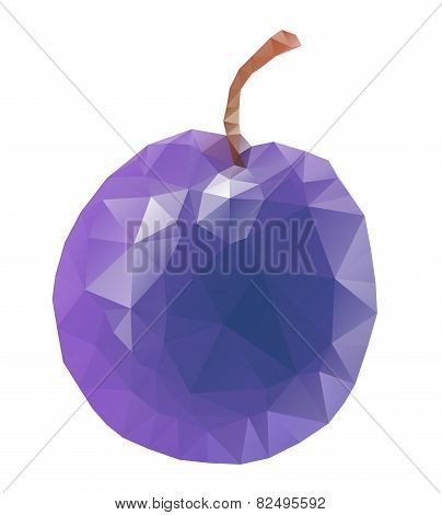 isolated plum