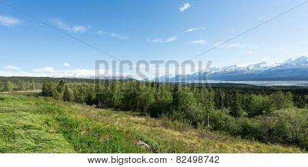 View of the Wrangells