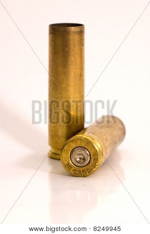 .30 Shell Casings