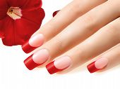 picture of french manicure  - Female hand with manicure and red french on nails - JPG