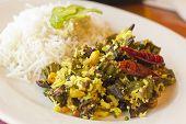 image of okras  - Indian vegetarian fried okra with basmati rice  - JPG