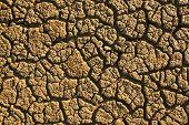 pic of arid  - Dry arid soil with cracks - JPG