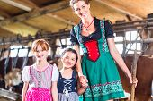 pic of cow  - Bavarian mother showing children cows in cow farm - JPG