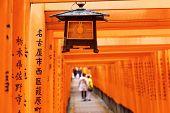 foto of inari  - Red Tori Gate at Fushimi Inari Shrine in Kyoto - JPG