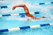 picture of swim meet  - Freestyle swimmer - JPG
