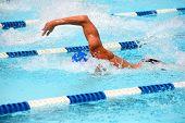 picture of swim meet  - Freestyle swimmer - JPG