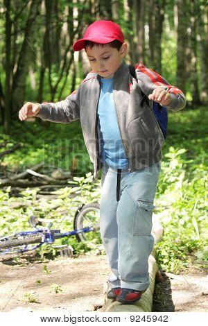 Boy Crossing Path By Log