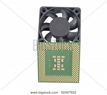 The Cooling Fan  And Cpu