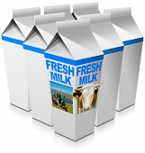 picture of cow head  - Group of milk packaging with text Fresh milk head of cow with horns and a herd of spotted cows grazing - JPG