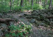picture of old stone fence  - Hiking trail leading through and old stone fence - JPG