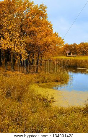 Autumn natural landscape - wooden small house near the old autumn oak forest in cloudy weather. Picturesque autumn landscape view in natural tones with soft focus