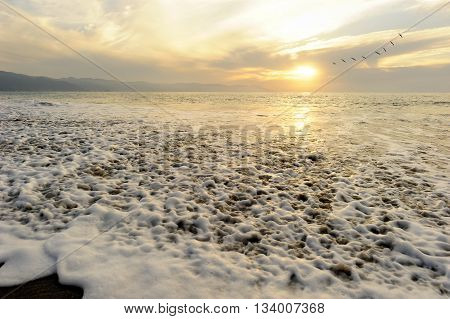 Ocean sunset birds is a seascape with a wave breaking on the shore as a flock of birds fly by in the background.