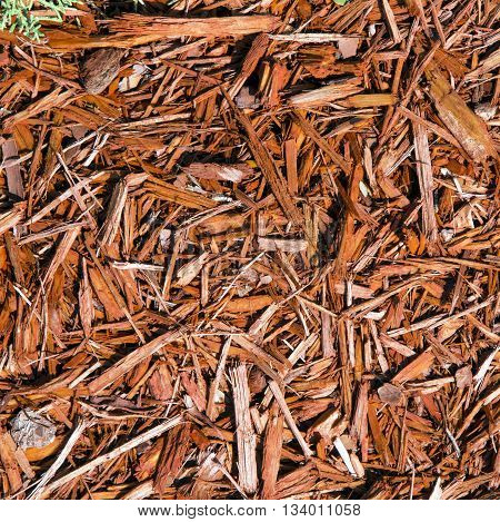 Background Of Natural Wood Shavings