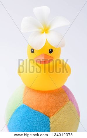 Yellow Duck Toy On Toy Soccer Ball With White Background