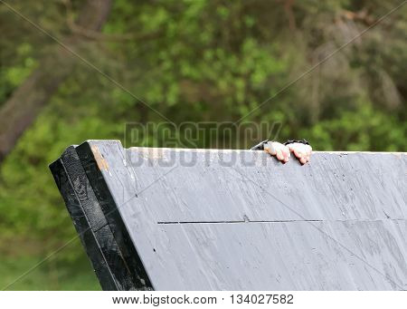 STOCKHOLM SWEDEN - MAY 14 2016: Two hands trying to climbing over a plank obstracle in the obstacle race Tough Viking Event in Sweden May 14 2016