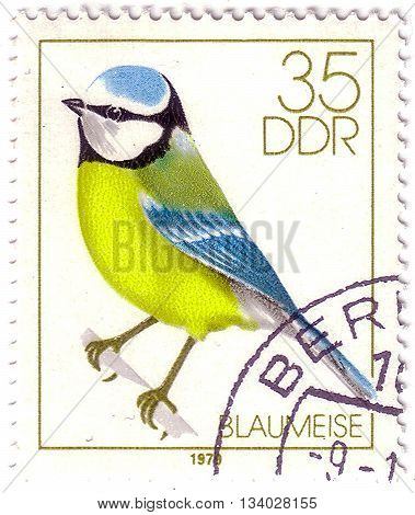 Germany- Circa 1979: Stamp Printed In Germany, Shows Song Bird Tit, Bluetit, Circa 1979.