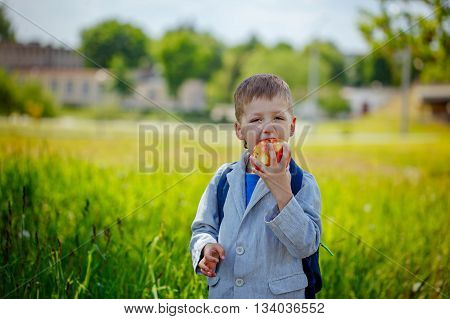 Little schoolboy with backpack and eating apple. Back to school outdoor