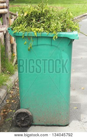 Large green bins with weeds. Green Recycle Bin.