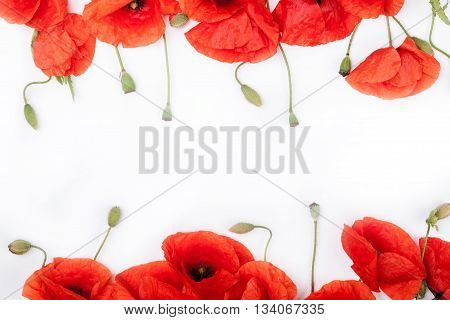 Heads of red weeds on the bottom and on top of white background flat lay