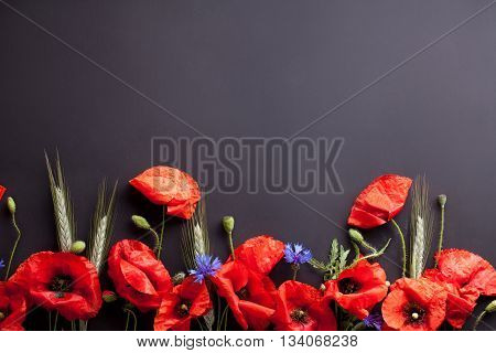 Heads of red poppies rye and cornflowers on the bottom of black background flat lay