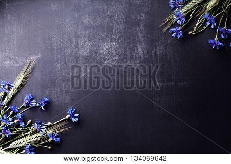 Blue cornflowers and rye on the corners of old blackboard