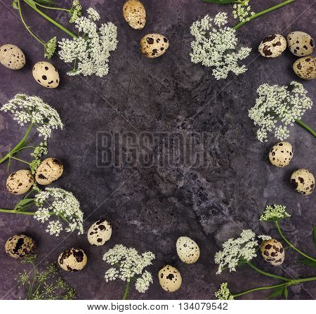 Decorative frame with quail eggs and flowers on dark background. Flat lay top view