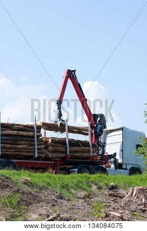 Glenariff Forest ParkNorthen Ireland june 06 2016. Crane operator loading logs on to truck