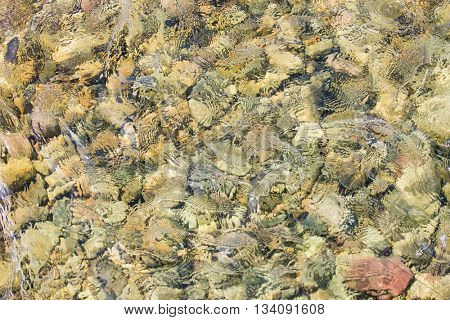 Beautiful high speed river background texture with large smooth stone under crisp defined water