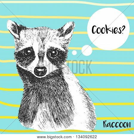 Vector close up portrait of raccoon. Hand drawn wild mammal animal illustration.  On ocean blue background with yellow strips.