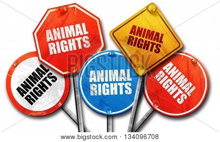 animal rights, 3D rendering, rough street sign collection