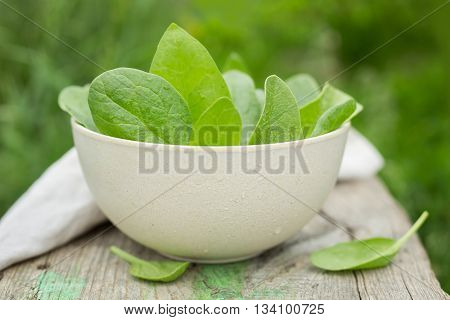 Bowl of fresh spinach leaves on wooden table, in the garden. Spinach leaves closeup. Spinach - Healthy food. Shallow depth of field