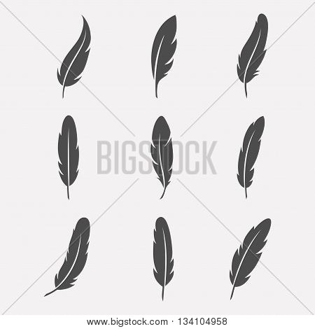 Feathers vector set in a flat style. Icons feathers isolated on a light background. Collection of silhouettes of dark feathers. Simple icons feathers as elements for design.