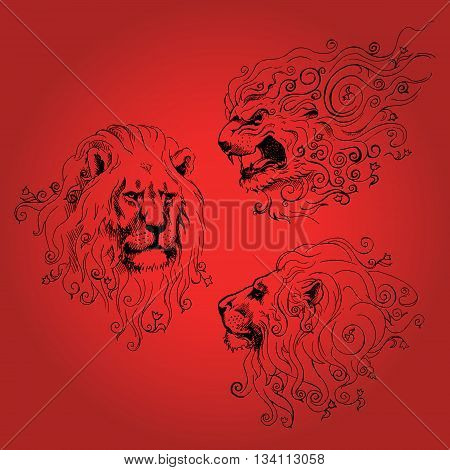 Hand drawn sketch of three lions faces and flowers in its mane. Vector illustration.