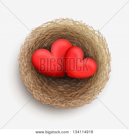 Two red hearts are laying together in nest. Love and harmony in family life