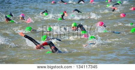 Grafham, Cambridgeshire, England - May 22, 2016:  Competitors swimming in at the end of the swimming stage at the beginning of Triathlon.