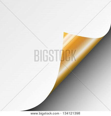 Page curl with shadow of a blank white sheet of paper with gold glossy back of page. Element for advertising and promotional message.