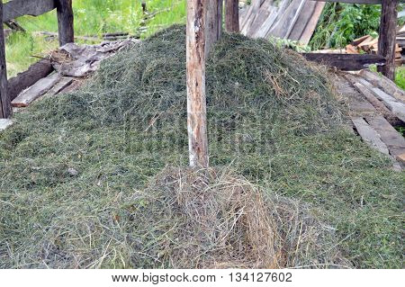hay lying in the open shed in the village