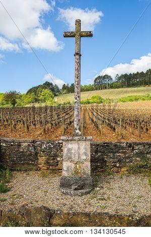Vineyard in Burgundy France with a stone cross on a background of the sky