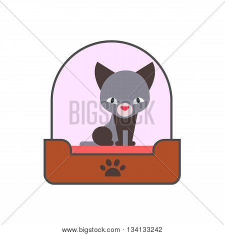 Kitten vector icon. Colored line icon of kitten in litter box