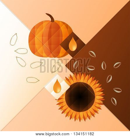 Vector illustration of pumpkin and sunflower. Oil and seeds of them.