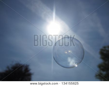 Flying soap bubble floating under the sun and between the trees