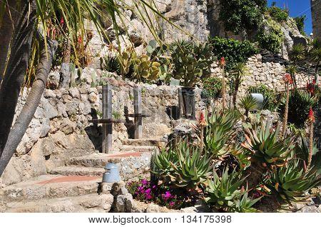 Eze France - april 19 2016 : the botanical garden