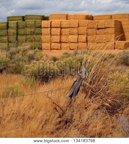 Colored Hay Stacks in the fall located in the High Desert Outback of Oregon.