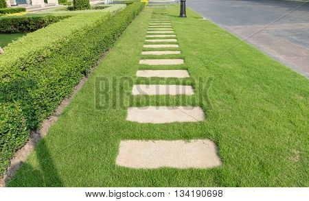 stone walkway on green grass in the garden